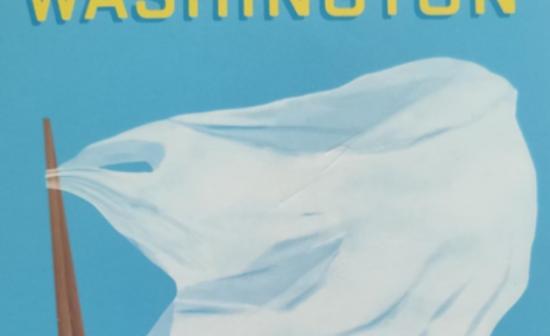cover boek aandenken brian washington